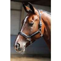 Harry's Horse Leather Head Collar/Headstall Black with Silver Piping Cob