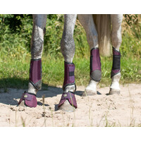QHP set 4 Eventing technical cross country boots - Large Purple
