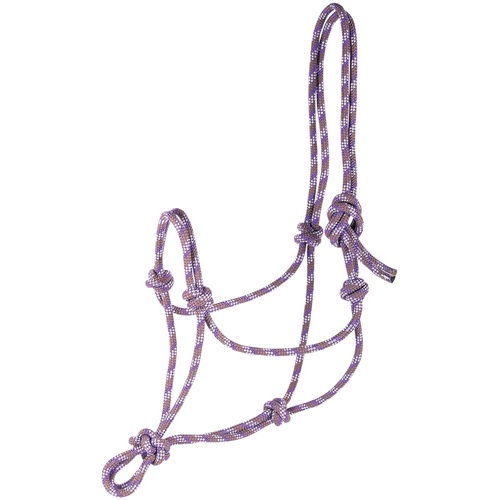 Harry's Horse Rope Halter - purple