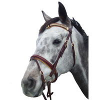 Bridles & Accessories
